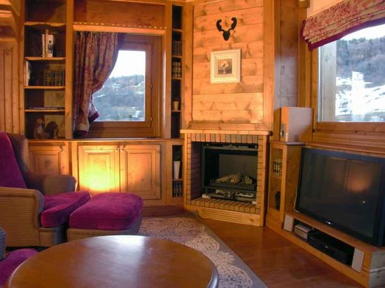 TV room with fireplace in the Alps
